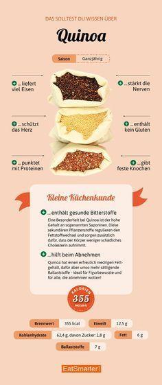 Das solltest du über Quinoa wissen   eatsmarter.de #quinoa #infografik #ernährung #glutenfrei
