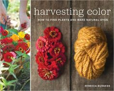 Harvesting Color: How to Find Plants and Make Natural Dyes: Rebecca Burgess: 9781579654252: Amazon.com: Books