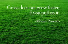 African Proverb, sounds like me.