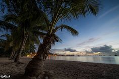 "#Madinina vue par @flash_photographie: ""Coucher de soleil à la Pointe Marin Martinique  Eos 6d  Samyang 14mm ISO 50 30s  #amazing_longexpo #bella_shots #bestnatureshot #caribbean #divinafotografia #fantastic_shotzs #hot_shotz #igs_america #ig_martinique #ig_caribbean #ig_masterpiece #ig_serenity #ig_captures #hdr_captures #sunsets #sunset #worldshotz #worldbestgram #photooftheday #phototag_it #splendid_shotz #splendid_horizon #igglobalclub #ig_worldclub#igs_world #fs_sunset #longexpoelite""…"