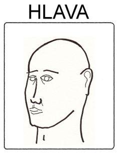 Části těla - hlava
