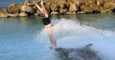 Swimming with the Dolphins is a bucket list item for many vacation travellers to Jamaica