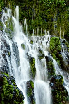 A portion of the springs at Burney Falls. California Destinations, California Travel, Beautiful Waterfalls, Beautiful Landscapes, Natural Waterfalls, Places To Travel, Places To See, Beautiful World, Beautiful Places