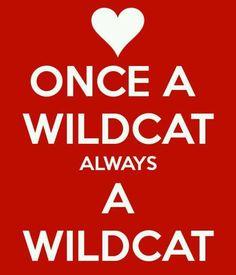 Once A Wildcat Aways A Wildcat
