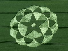Crop Circle at Avebury, Trusloe, Wiltshire, England - photo from temporarytemples;  20 June 1998