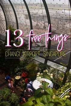 Long layover and delay in Changi Airport, Singapore? Don't worry! Enjoy and get these 13 free things that you can do while waiting for your next boarding in Changi Airport- massage, butterfly garden, free wifi, and even free singapore tour! The best aiport in the world!