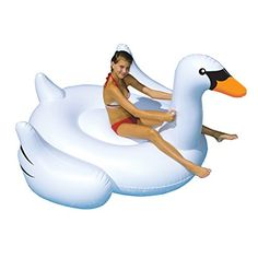 International Leisure Giant Swan International Leisure http://www.amazon.com/dp/B00166ES9G/ref=cm_sw_r_pi_dp_GgF9wb0VMBN7C