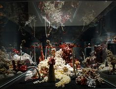 Hyperbolic Crochet Coral Reefs - One of the coolest collaborative art, science, and education projects ever