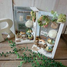 Miniature garden♡ ♡ By rere