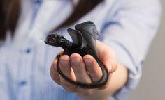"""How to Create a Cute Baby Dragon Photo Manipulation in Adobe Photoshop,"" by Monika Zagrobelna, via Design Tuts+."