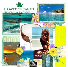 Beautiful Organic & Vegan Hair Masks made in small batches. Infused with Tahitian Monoi Oil. Shop in Canada & The US and we'll deliver Tahiti right to your doorstep! Oil Shop, Hair Masks, Mask Making, Tahiti, Canada, Organic, Vegan, Artwork