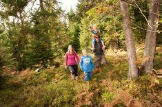 Der Dorfbachweg ist 5,5 km lang und schöner abwechslungsreicher Wanderweg, den man auch mit dem Kinderwagen erleben kann Kanken Backpack, Backpacks, Bags, Interactive Map, Ski Resorts, Kids Wagon, Explore, Hiking, Nice Asses