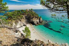 Steile Klippen, versteckte Strände, türkisblaues Wasser und mystische Wälder: Die Region Finistère in der Bretagne ist eine vielfältige Gegend, die wunderbar mit dem Wohnmobil entdeckt werden kann.