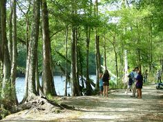 Lumber River Day