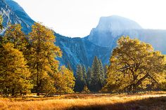 Yosemite - Fall morning