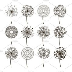 Dandelion flower icons Dandelions fluffy seeds vector image on VectorStock Embroidery Stitches, Embroidery Patterns, Hand Embroidery, Zentangle Patterns, Art Floral, Whats Wallpaper, Dandelion Flower, Dandelion Seeds, Flower Doodles