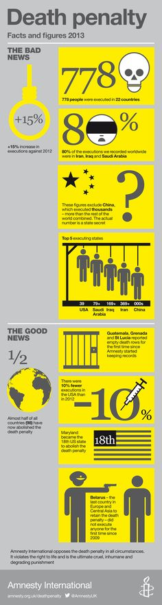 The Death Penalty in 2013