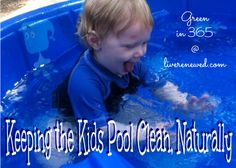 Natural ways to keeping the Kiddie Pool Clean from LiveRenewed.com
