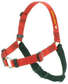 SENSE-ation No-Pull Dog Harness - Red, Large (Wide) >>> You can get more details by clicking on the image. (This is an Amazon affiliate link)