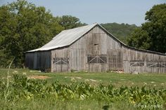 An old barn in Tennessee.
