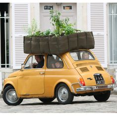 main image of Mobile Garden Containers..GREAT idea...way to grow your food..take it with you, if you move!