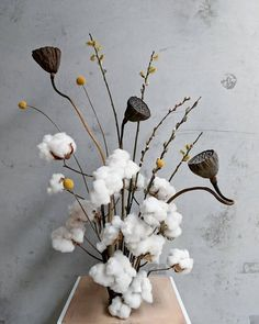 cotton and billy ball arrangement Dried Flower Arrangements, Flower Centerpieces, Dried Flowers, Flower Decorations, Flower Images, Flower Art, Flower Installation, How To Preserve Flowers, Arte Floral