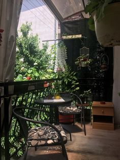 ANI Apartment, Ochrid – aktualizované ceny na rok 2019 Plants, Plant, Planets