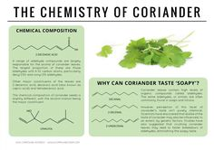 The Chemistry of Coriander
