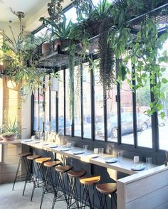 That plant shelf, though teto verde, interiores de lojas, ideias verdes, gr Restaurant Booth Seating, Decoration Restaurant, Deco Restaurant, Cafe Seating, Restaurant Tables, Tanzstudio Design, Deco Design, Cafe Design, Restaurant Interior Design