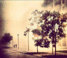 First fog - Milano, Milan