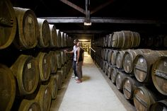 Visit of a cognac cellar  CRTPC2010-2015©M.Anglada  http://www.holidays-france-atlantic.com