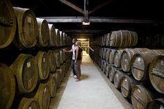 Visit of a cognac cellar  CRTPC2010-2015©M.Anglada  http://www.holidays-france-atlantic.com