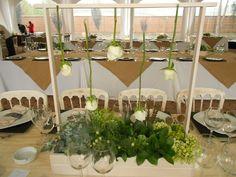 Centro de Mesa con Suculentas y Rosas Colgantes