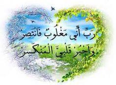 كن مسلما ♥️ كوني مؤثرة ♥️ هذه سبيلي ادعو الى الله ♥️ هذا هو الاسلام ♥️ حب القران ♥️ قنوان دانية