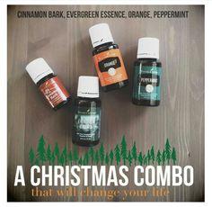 Christmas combo - 7 drops Evergreen Essence, 3 drops Cinnamon Bark, 2 drops Orange, 2 drops Peppermint