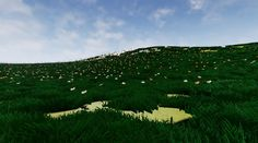 Exemplo de grama