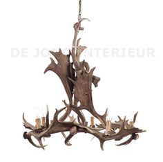 1000 ideas about antler lamp on pinterest deer antler for Lamp gewei