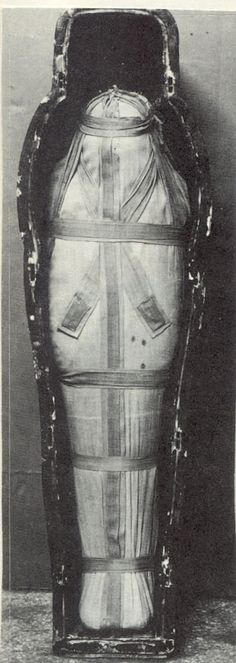THE COFFIN WAS NOT ORIGINALLY MADE FOR HER - The Royal Mummies and portraits- Isiemkheb-D