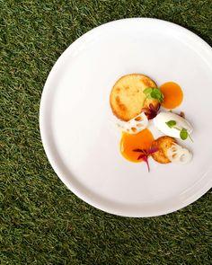 Apricot Chicken as a dessert