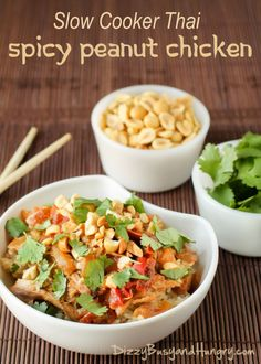 Slow Cooker Thai Spicy Peanut Chicken http://www.dizzybusyandhungry.com/slow-cooker-thai-spicy-peanut-chicken/