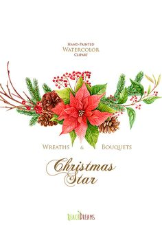 Christmas Star Poinsettia. Merry And Bright. by ReachDreams