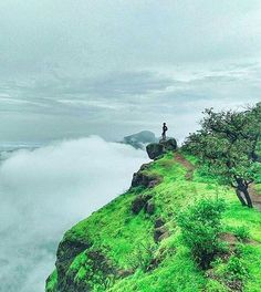 Location: Harihar Fort Nasik  Today's top pick of @trellingpune . . Face your fear🙋 Picture Courtesy :- @prashantgokarankar . . Use #trellingpune to get featured!  Be a part of coolest community at instagram.com/trellingpune  Tryout Trell App to discover new things in the city and connect with a global community of explorers, travelers, photographers and foodies!  Download it from trellapp.com