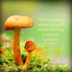 Go to that place where anything is possible. #within #heart www.KatrinaMayer.com #infinitepossibilities #love #peace #joy #happiness #weareone #goodvibes #spreadthelove #kindness #smile #enjoylife #behappy #lightworker #goodenergy #motivation #passion #inspiration #lawofattraction #spiritual #awaken #consciousness #onelove #wholeness #bliss #enlightenment #meditation #lifeisbeautiful #wordsofwisdom