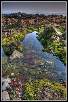Onchan Rock Pool, Isle of Man Need to Isle of Man, to  explore my ancestry here.