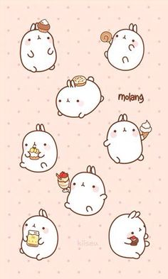 Molang & foods