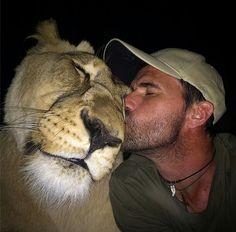 Lion Kiss by Kevin Richardson Kevin Richardson, Animal Gato, Mundo Animal, Animals And Pets, Baby Animals, Cute Animals, Wild Animals, Beautiful Cats, Animals Beautiful