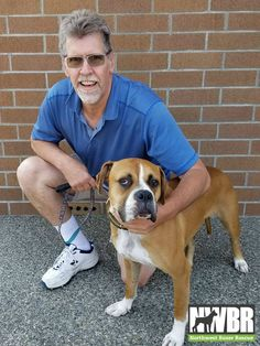 Sarge got his forever family with Greg Sutton. It was a long drive from the Central Oregon Coast, but well worth the trip. Greg recently lost his Boxer boy & knew that his house really needed a wiggle butt to feel like home. Sarge has trust issues with humans, but once he spent some time with Greg & went for a walk, Sarge was warming up to Greg. Sarge will be able to continue learning what it is to live in a home & how great life can be with people that love you & just want to show you love.