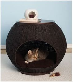 cat igloo table...pet room ... perfect for Milo