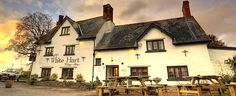 White Hart, Langybi in Wales  http://www.thegoodpubguide.co.uk/pub/view/White-Hart-NP15-1NP