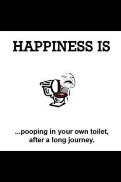 HAHAHAHA .... so TRUE!!!! I will be sooooooooooo relief and Happy after pooping especially after a looooooonnnnggg journey!!! :D :D